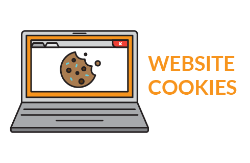Web Cookies in hindi
