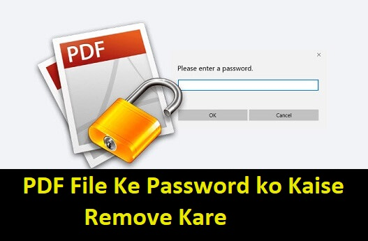 PDF File Password