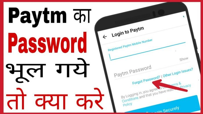 paytm password reset