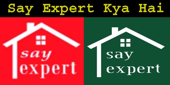 Say expert kya hai